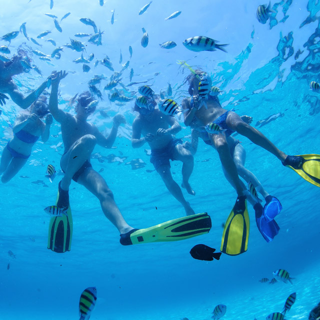 Snorkel-Hire-Magnetic-Island